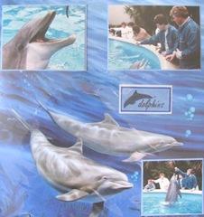 1986 Florida Sea World lge. dolphin