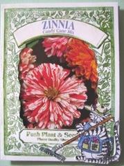 zinna seed Kliban cat card