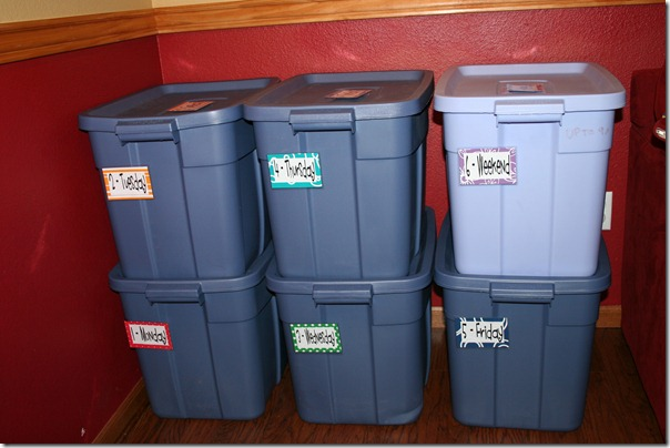 2011-01-24 Toy Bins (1)