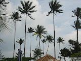 nomad4ever_indonesia_pulau_bintan_IMG_2715.jpg