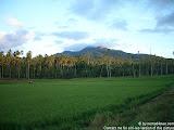 nomad4ever_indonesia_sulawesi_manado_bunaken_CIMG2460.jpg