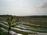 nomad4ever_indonesia_bali_landscape_CIMG1735.jpg