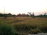 nomad4ever_indonesia_bali_landscape_CIMG1728.jpg