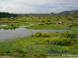 nomad4ever_indonesia_bali_landscape_CIMG1984.jpg