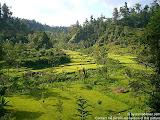 nomad4ever_indonesia_bali_landscape_CIMG1921.jpg