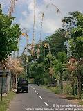 nomad4ever_indonesia_bali_landscape_CIMG1868.jpg
