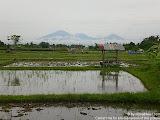 nomad4ever_indonesia_bali_landscape_CIMG2100.jpg