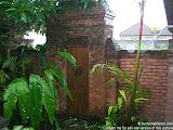 nomad4ever_indonesia_bali_landscape_CIMG2114.jpg