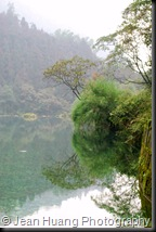 Shallow Stream Water - Qingyin Pavilion, Mount Emei, Sichuan Province, China
