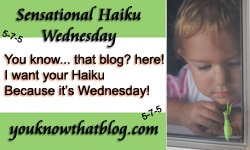 haiku wednesday