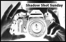 ShadowShotSundaylogo123