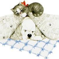 CatDog's2.jpg
