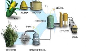 la-biomasa-biocombustible-