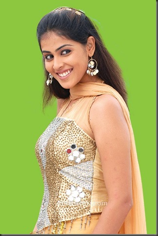 1Genelia hot bollywood actress pictures150210