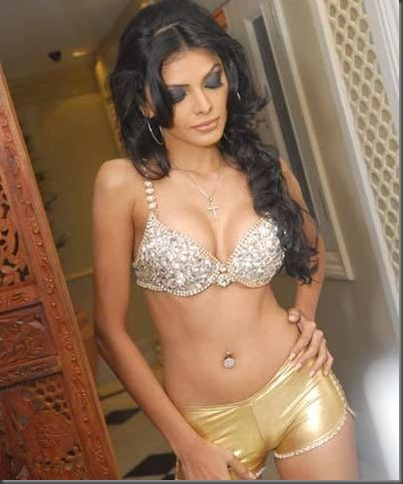 \sherlyn chopra sexy pictures 191009