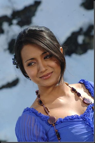 trisha sexy kollywood actress pictures210910