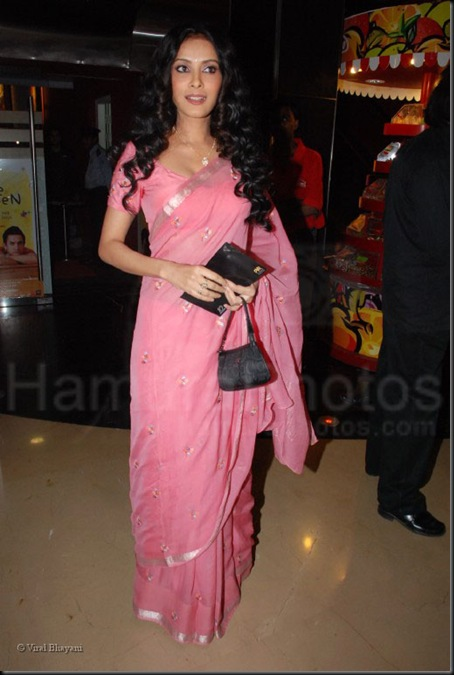 Nadana Sen at the premiere of Dance of the Winds in PVR Juhu on Jan 30th 2008 (37)