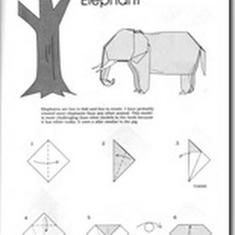 diagramas flor de loto origami