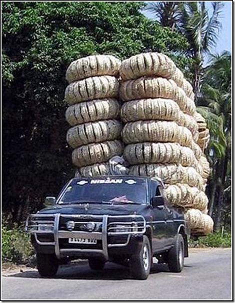 transporte de mercancias cosasdivertidas (19)