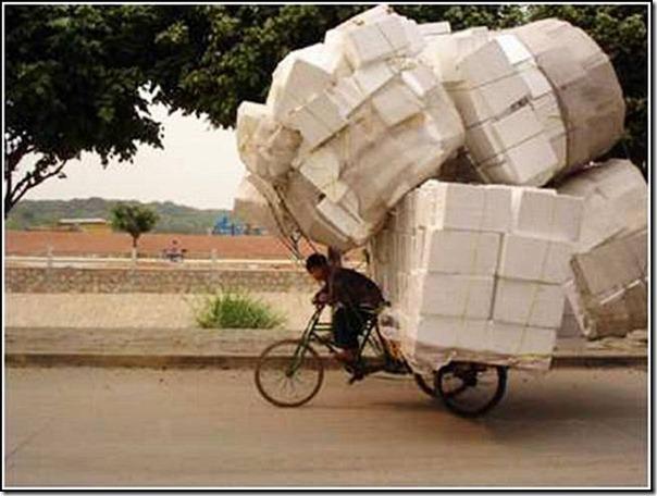 transporte de mercancias cosasdivertidas (17)