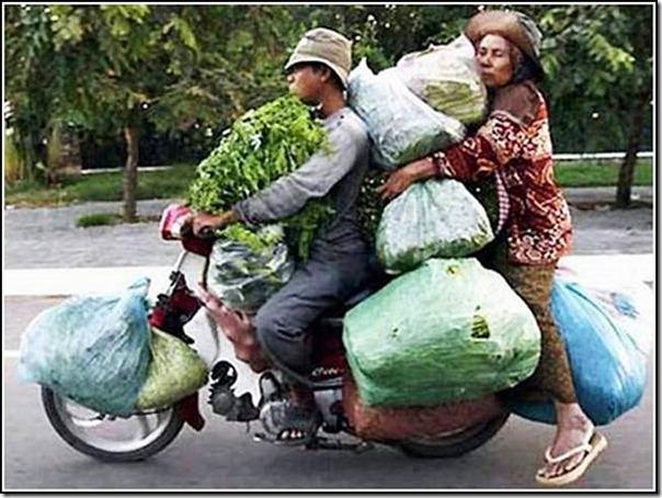 transporte de mercancias cosasdivertidas (18)