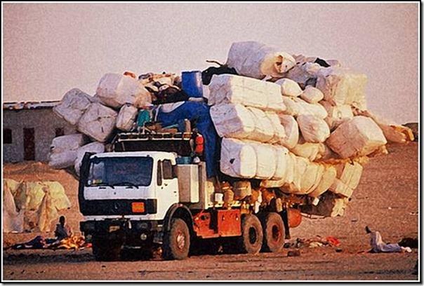 transporte de mercancias cosasdivertidas (29)