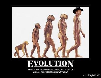 evolución humor cosasdivertidas (11)