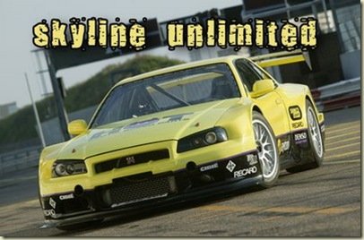 skyline-unlimited