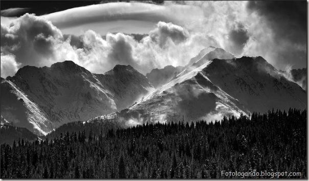 Fotos artísticas em preto e branco (28)