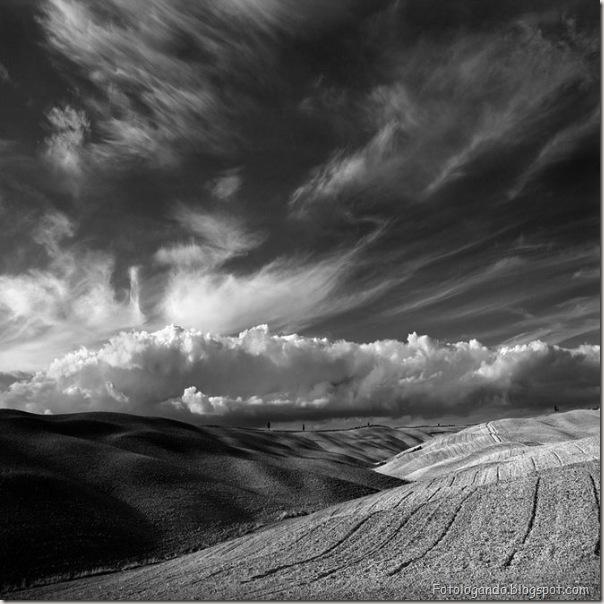 Fotos artísticas em preto e branco (13)