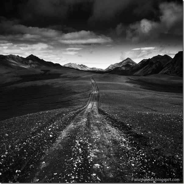 Fotos artísticas em preto e branco (3)