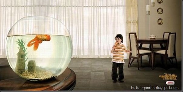 Melhores fotos criativas com crianças (2)