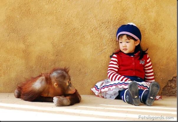 Fotos de animais no zoo capturadas no momento certo (15)