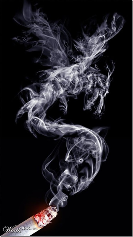 A bela arte feita com a fumaça (14)