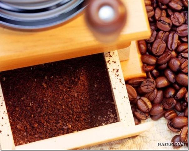 Fotos para amantes do café (3)