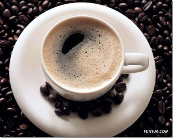 Fotos para amantes do café (5)