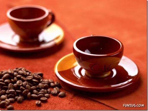 Fotos para amantes do café (10)
