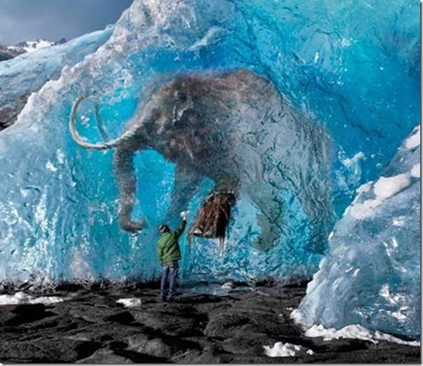 Fotografias criativas para campanhas publicitarias por Steve Bronstein (2)