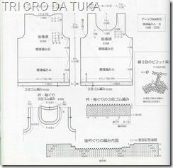 tunica a