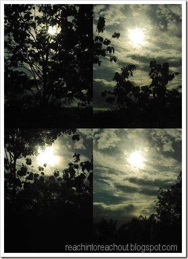 Roadside sun picture4