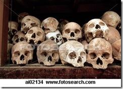 human skulls 1