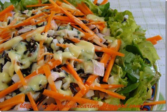 Salada-de-Arroz-Integral-com-Peito-de-Peru-02