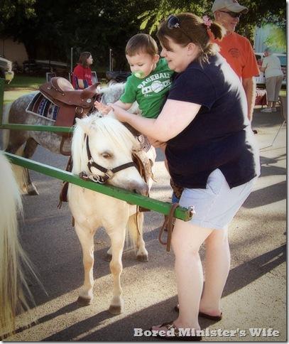 Cowan Tracie Horse 3