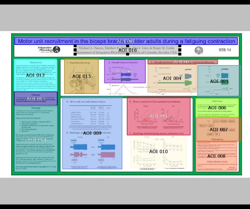 AOI Editor.jpg