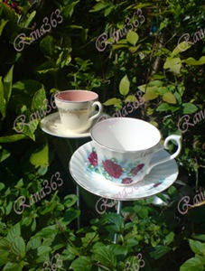 teacup%20