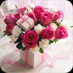 bsweetpick_flower_a_xxl