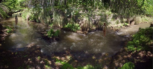 Creek at Guamini