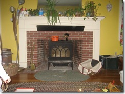 Froling P4 New wood stove for Emergency Back-up