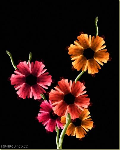flores humanas 18