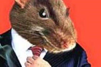 rato2.<span class=